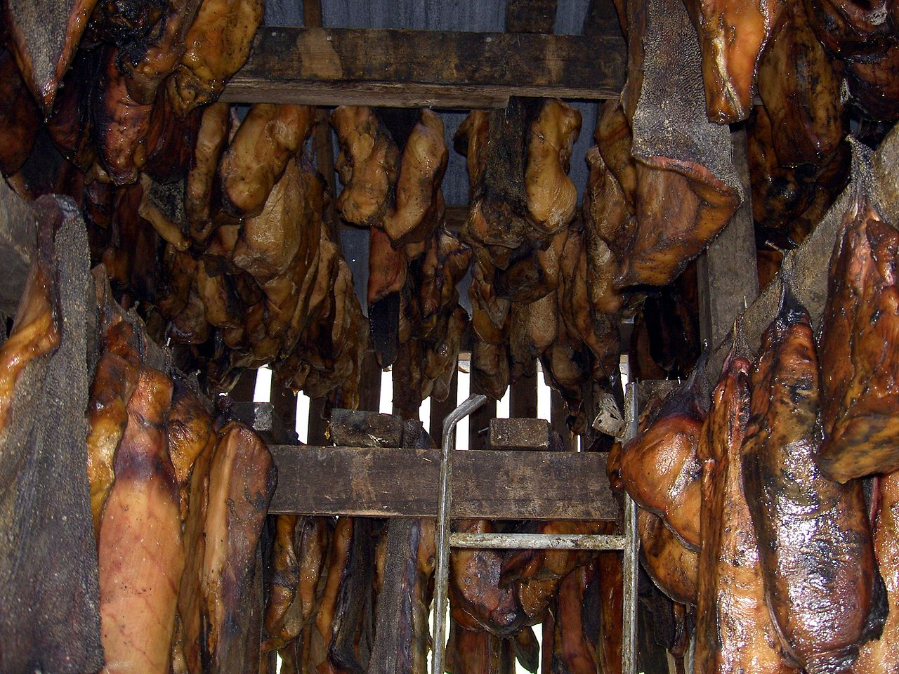 fermentierter hai